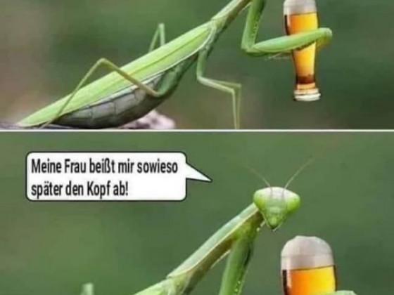 Späßle